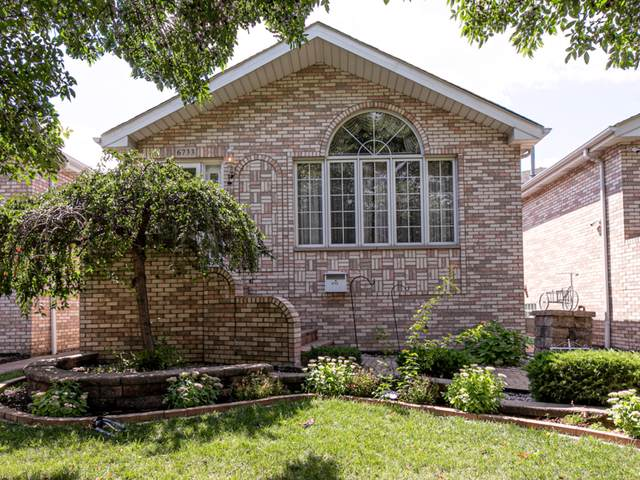 6733 W 64th Place, Chicago, IL 60638 (MLS #10495952) :: The Wexler Group at Keller Williams Preferred Realty