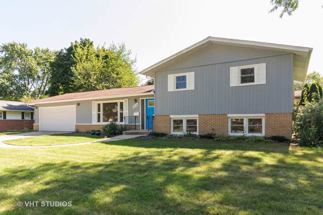 6541 Lyman Avenue, Downers Grove, IL 60516 (MLS #10496024) :: BNRealty