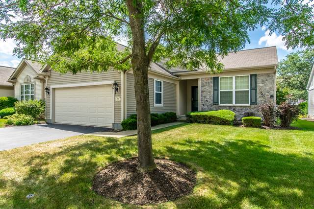 201 National Drive, Shorewood, IL 60404 (MLS #10496141) :: The Wexler Group at Keller Williams Preferred Realty