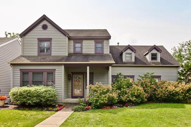 1038 Mount Vernon Drive, Grayslake, IL 60030 (MLS #10496193) :: John Lyons Real Estate