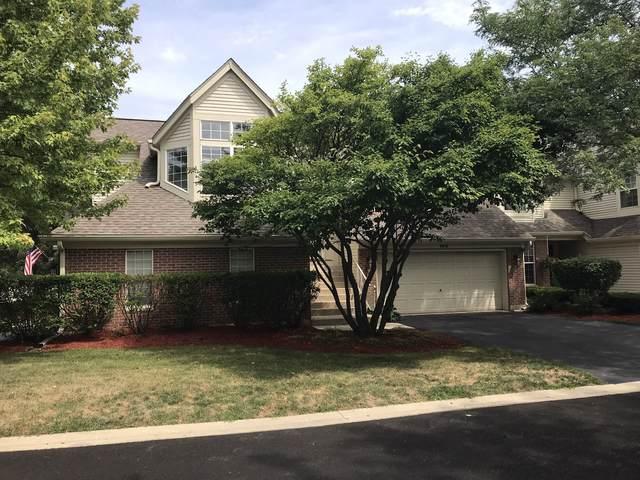 95 Ione Drive B, South Elgin, IL 60177 (MLS #10496342) :: John Lyons Real Estate