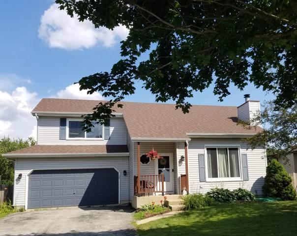 1708 Calla Drive, Joliet, IL 60435 (MLS #10496448) :: Ani Real Estate
