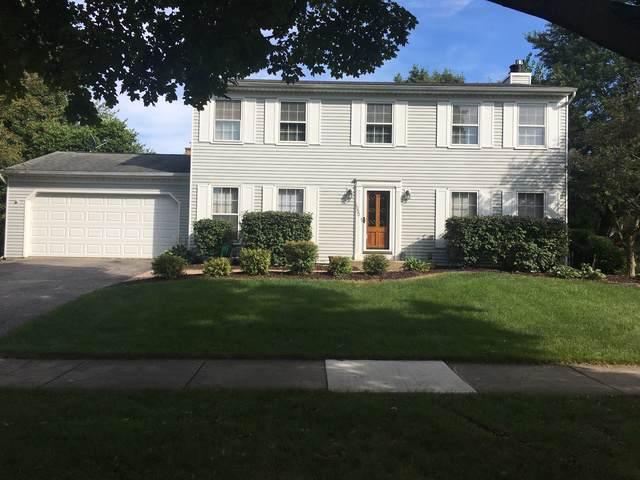 1050 E Gartner Road, Naperville, IL 60540 (MLS #10496450) :: Berkshire Hathaway HomeServices Snyder Real Estate
