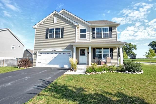 8403 Eva Avenue, Joliet, IL 60431 (MLS #10496453) :: Ani Real Estate