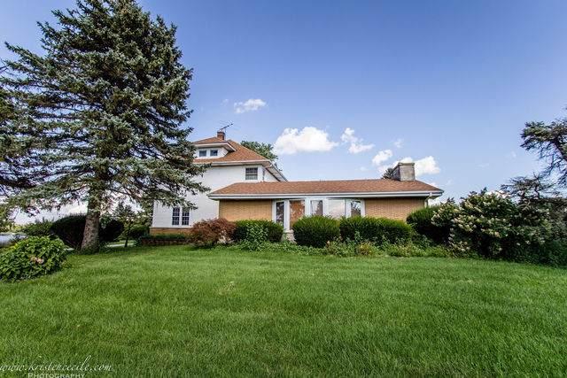 28809 Ridgeland Road, Peotone, IL 60468 (MLS #10496464) :: Suburban Life Realty