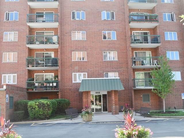 555 S River Road #303, Des Plaines, IL 60016 (MLS #10496509) :: Ani Real Estate