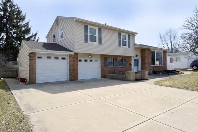 1459 E Dorothy Drive, Palatine, IL 60074 (MLS #10497497) :: Baz Realty Network | Keller Williams Elite