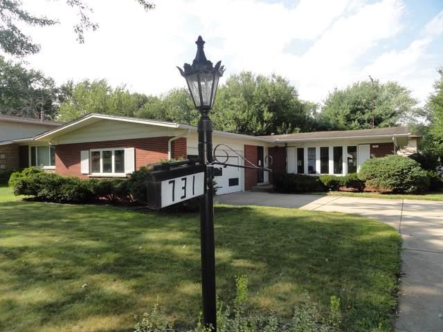 731 W Palm Drive, Glenwood, IL 60425 (MLS #10498116) :: Baz Realty Network | Keller Williams Elite