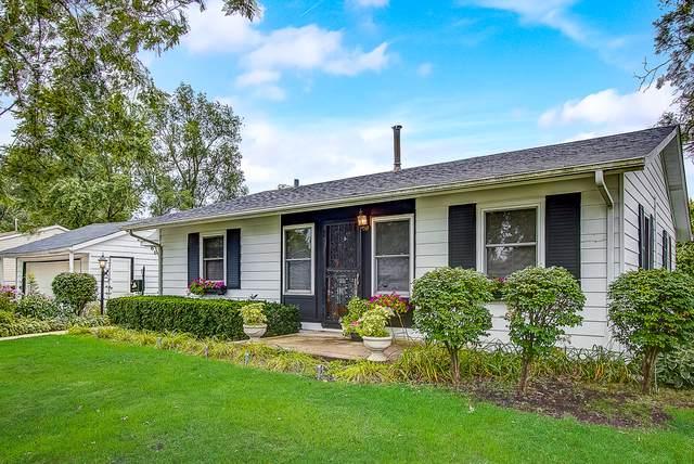 101 Hickory Avenue, Streamwood, IL 60107 (MLS #10502086) :: Ani Real Estate