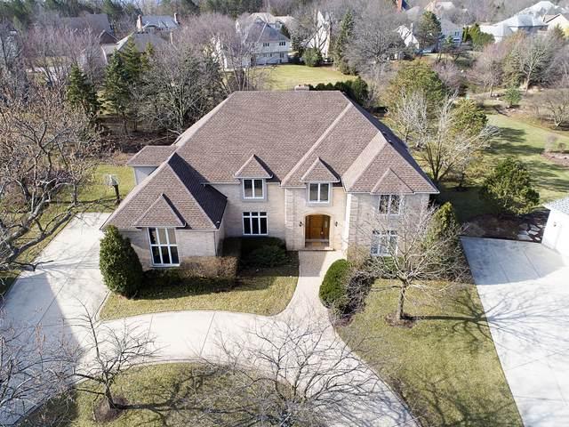 6 Todor Court, Burr Ridge, IL 60527 (MLS #10502152) :: Baz Realty Network | Keller Williams Elite