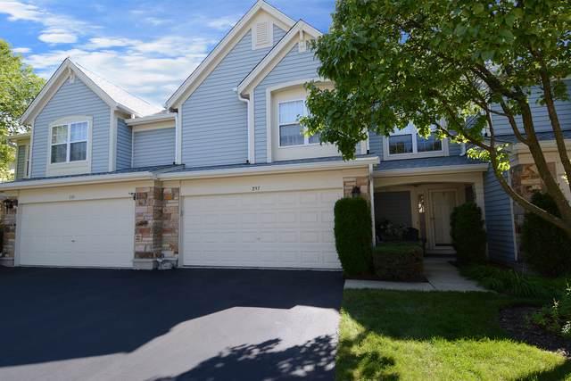 237 Hawk Court, Schaumburg, IL 60193 (MLS #10502212) :: Ani Real Estate