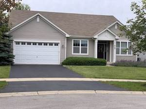 717 Bohannon Circle, Oswego, IL 60543 (MLS #10502977) :: The Mattz Mega Group