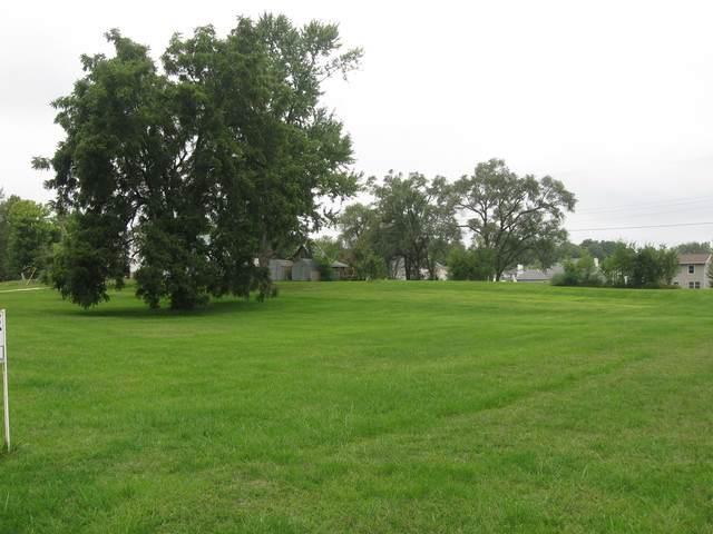 820 Northwestern Street, Spring Valley, IL 61362 (MLS #10503218) :: Ani Real Estate