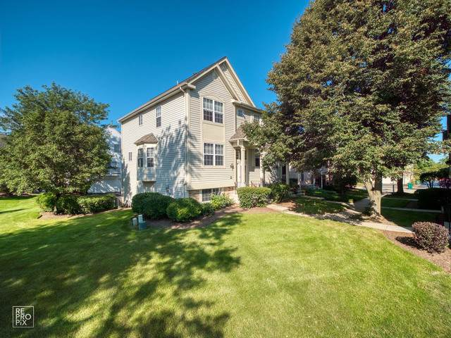 1086 Manchester Circle, Grayslake, IL 60030 (MLS #10503509) :: Baz Realty Network | Keller Williams Elite