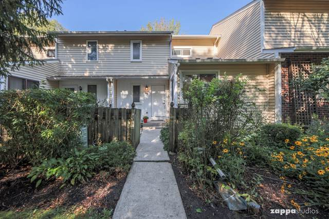 29 Wintergreen Court, Woodridge, IL 60517 (MLS #10504379) :: Property Consultants Realty