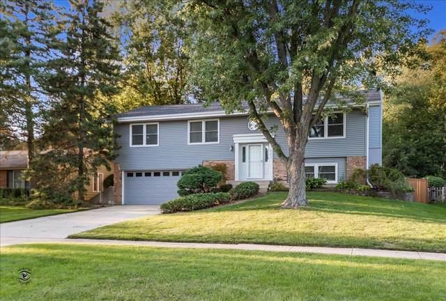 21W562 Buckingham Road, Glen Ellyn, IL 60137 (MLS #10504743) :: John Lyons Real Estate