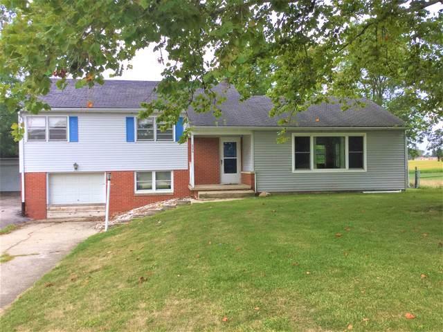 806 N Main Street, Saybrook, IL 61770 (MLS #10504866) :: Angela Walker Homes Real Estate Group