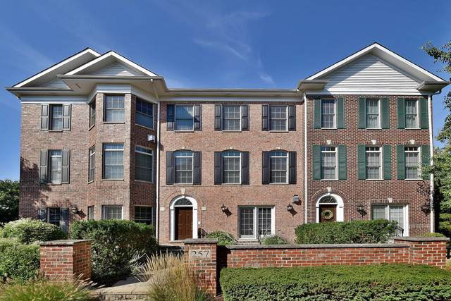 257 Box Car Avenue, Naperville, IL 60540 (MLS #10505156) :: Angela Walker Homes Real Estate Group
