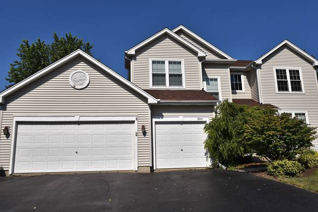 300 Tenby Way, Algonquin, IL 60102 (MLS #10505587) :: Angela Walker Homes Real Estate Group