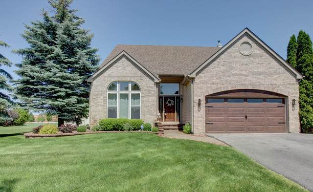 227 Butler Drive, Bartlett, IL 60103 (MLS #10506842) :: Property Consultants Realty