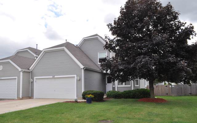 1487 Exeter Lane, South Elgin, IL 60177 (MLS #10506985) :: Property Consultants Realty