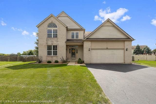 291 Violet Drive, Romeoville, IL 60446 (MLS #10507595) :: Angela Walker Homes Real Estate Group