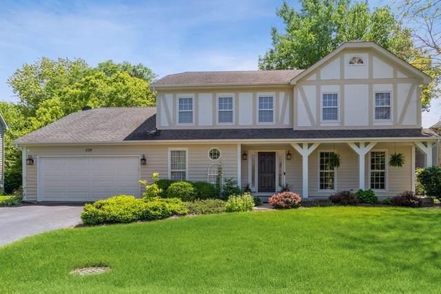 624 Arlington Avenue, Naperville, IL 60565 (MLS #10507638) :: Baz Realty Network | Keller Williams Elite