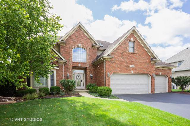 5536 Bergamot Lane, Naperville, IL 60564 (MLS #10508042) :: Property Consultants Realty