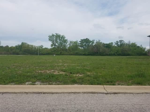 22802 Farm Trace Drive, Richton Park, IL 60471 (MLS #10508100) :: BNRealty
