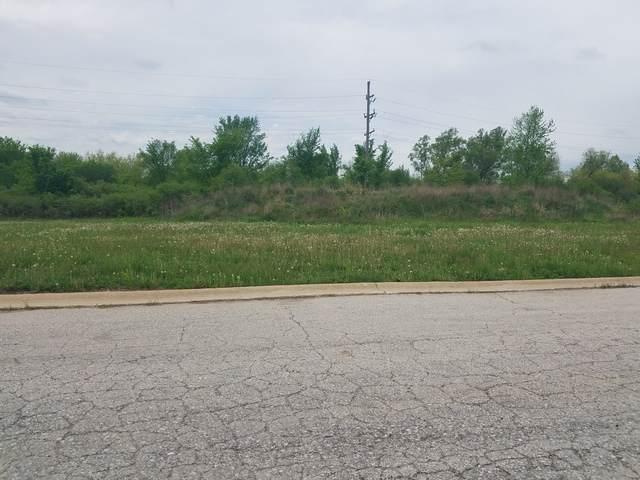 22808 Farm Trace Drive, Richton Park, IL 60471 (MLS #10508102) :: BNRealty