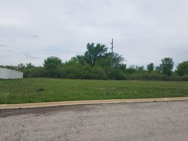 22832 Farm Trace Drive, Richton Park, IL 60471 (MLS #10508108) :: BNRealty