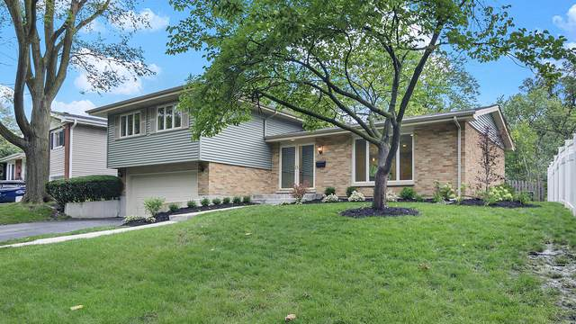 868 Hawthorn Circle, Lombard, IL 60148 (MLS #10508212) :: Baz Realty Network | Keller Williams Elite