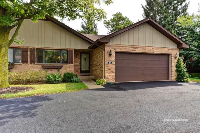 57 Castle Rock Lane, Bloomingdale, IL 60108 (MLS #10508376) :: Ani Real Estate