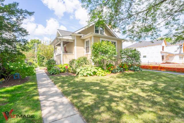 282 N Maple Avenue, Elmhurst, IL 60126 (MLS #10508489) :: Ryan Dallas Real Estate