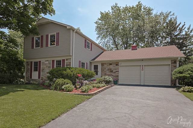 920 Dorncliff Lane, Buffalo Grove, IL 60089 (MLS #10508629) :: Baz Realty Network | Keller Williams Elite