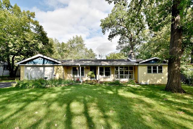 343 N Ferndale Avenue, Elmhurst, IL 60126 (MLS #10508651) :: Ryan Dallas Real Estate