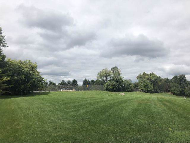 433 Ridge Court, Lake In The Hills, IL 60156 (MLS #10508720) :: The Mattz Mega Group