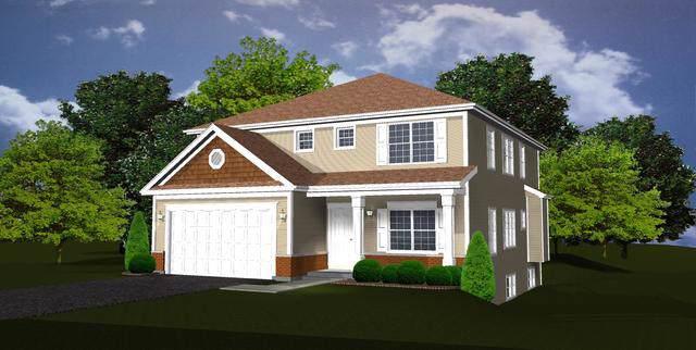 336 W Helen Road, Palatine, IL 60067 (MLS #10509203) :: Ani Real Estate