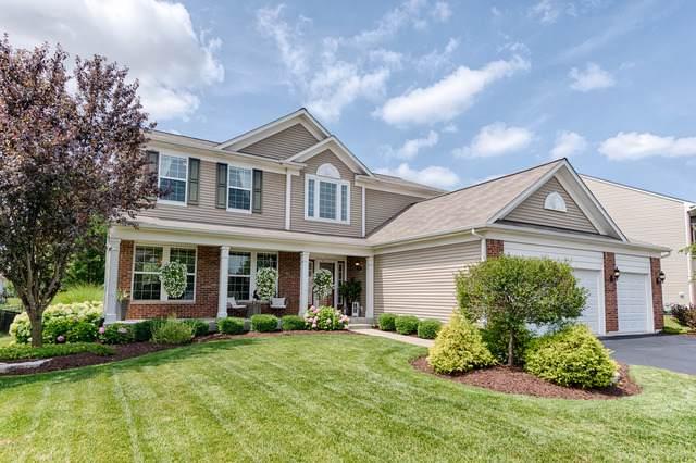 193 Chapin Way, Oswego, IL 60543 (MLS #10509475) :: O'Neil Property Group