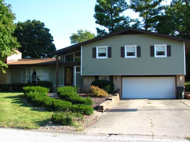 111 Holiday Drive, Tuscola, IL 61953 (MLS #10510193) :: Littlefield Group