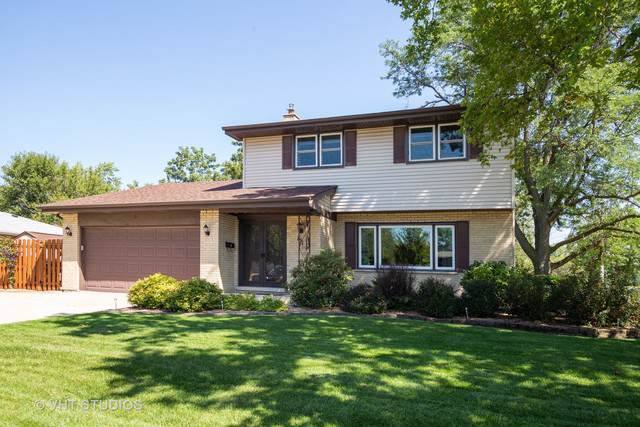 151 N Flora Parkway, Addison, IL 60101 (MLS #10510367) :: Littlefield Group