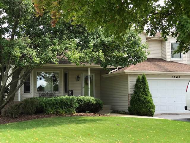 1508 Lakewood Drive, Joliet, IL 60431 (MLS #10510886) :: Property Consultants Realty