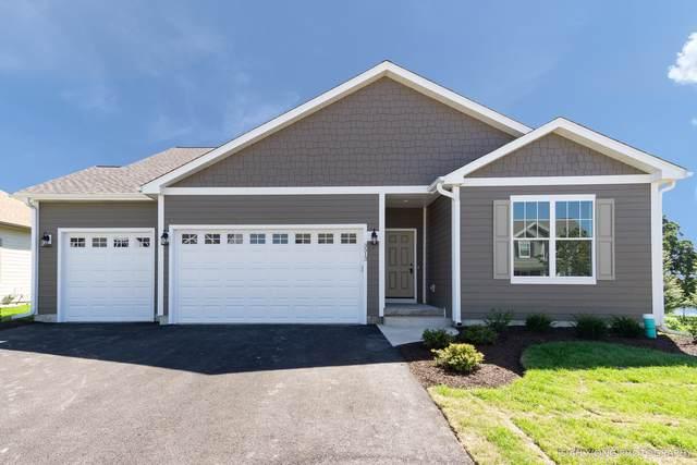 3513 Gallant Fox Drive, Elgin, IL 60124 (MLS #10511233) :: Ani Real Estate