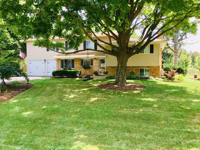 6045 Lenox Court, Lisle, IL 60532 (MLS #10511261) :: Property Consultants Realty