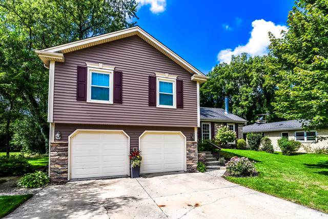 822 Spring Street, Roselle, IL 60172 (MLS #10511378) :: Ani Real Estate