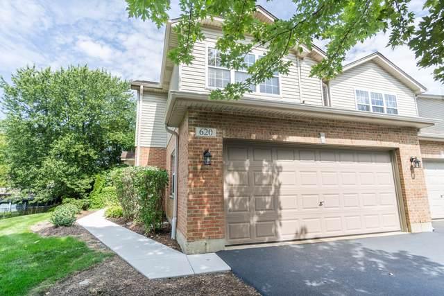 620 Daisy Lane, Roselle, IL 60172 (MLS #10511643) :: Ani Real Estate