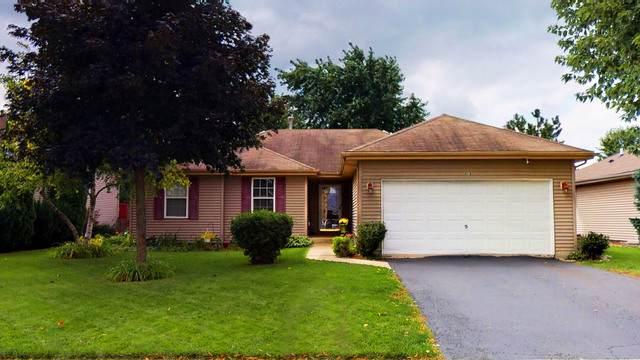 4518 Skylark Lane, Plainfield, IL 60586 (MLS #10512338) :: Property Consultants Realty