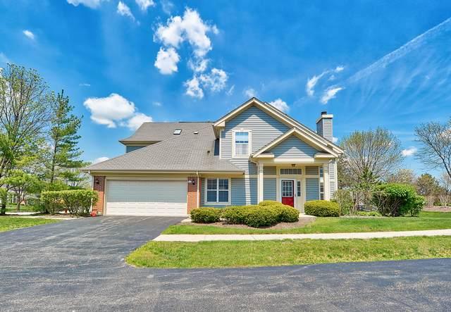 251 Manor Drive #251, Buffalo Grove, IL 60089 (MLS #10512640) :: Baz Realty Network | Keller Williams Elite