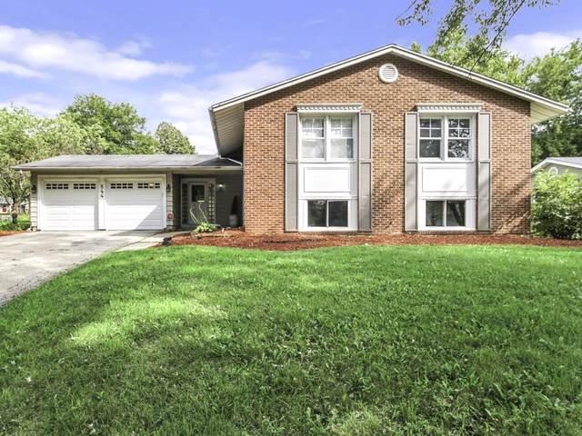 544 Concord Lane, Bolingbrook, IL 60440 (MLS #10513970) :: Ani Real Estate