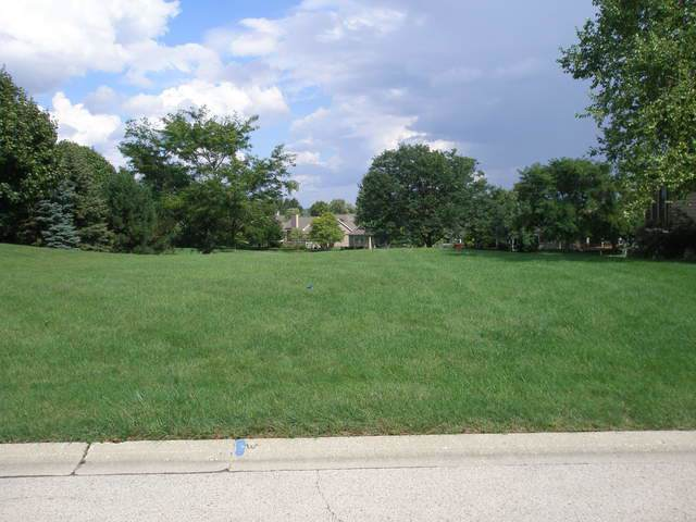 46 Sandstone Court, Lake In The Hills, IL 60156 (MLS #10514207) :: Lewke Partners
